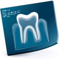 マタニティ歯科④