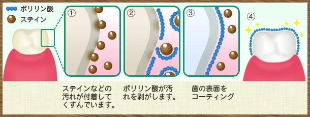 ポリリン酸の仕組み